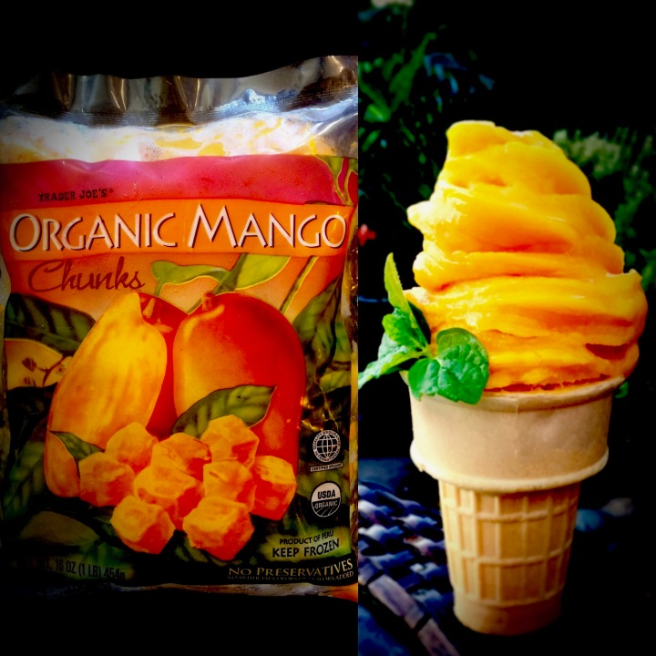 One Ingredient MANGO SORBET (Soft Serve)